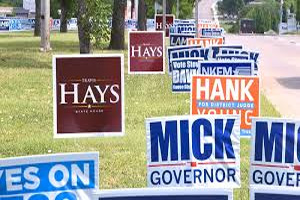 Yard Full of Political Signs