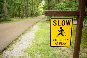 Slow Down! Pets and Kids at Play!